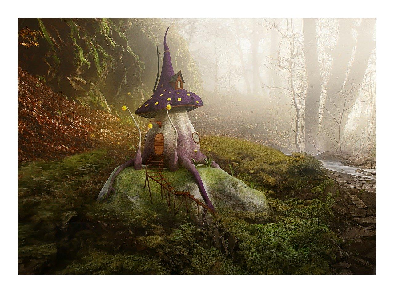mushroom, magic, forest